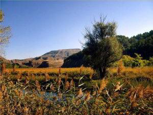 Entorno natural del Río Henares